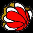 new-basket-prevalle