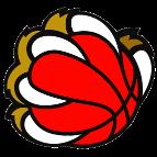 New Basket Prevalle