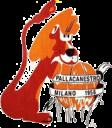 pall-milano-1958